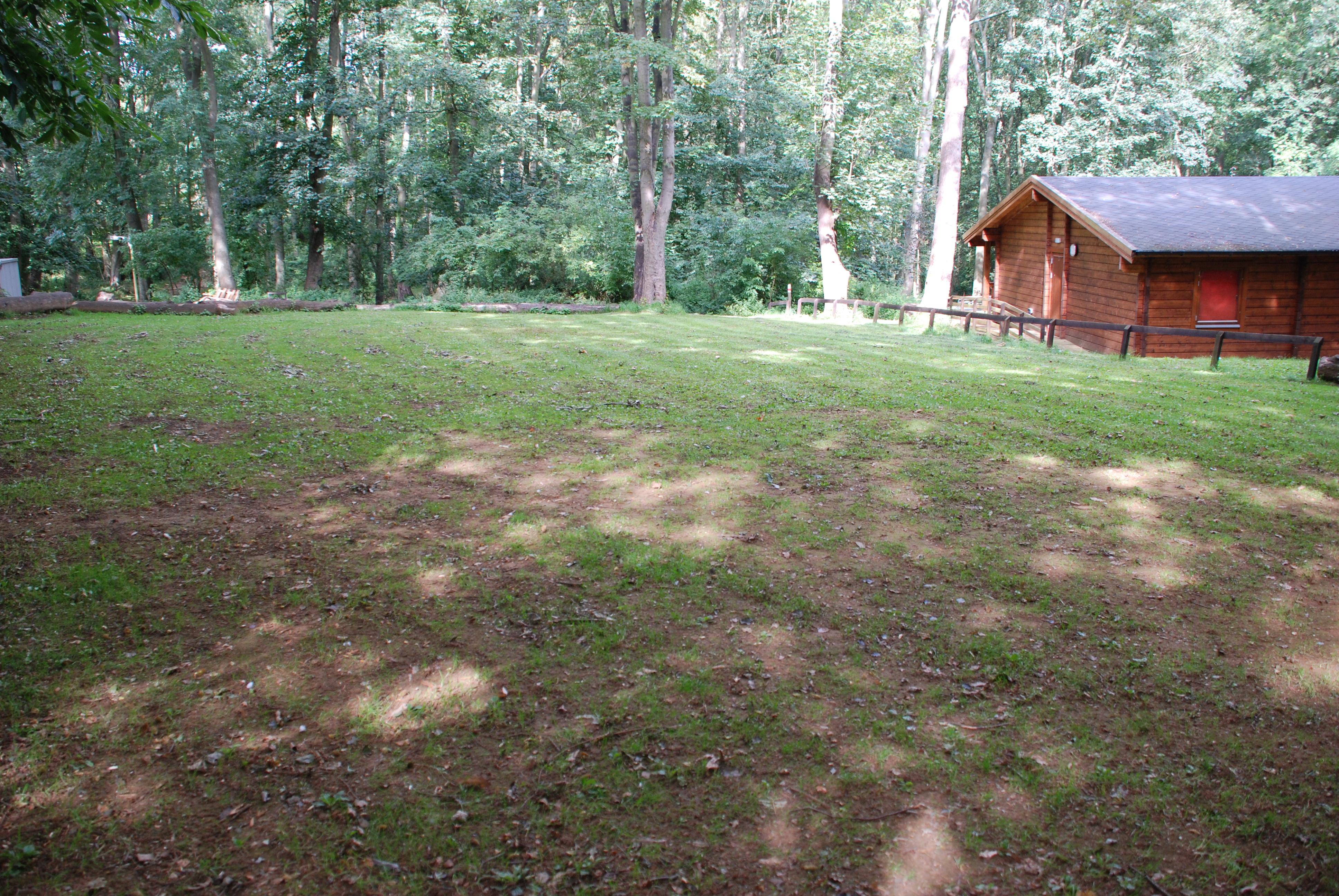 Elm campsite