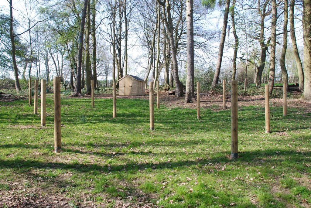 Hammock site